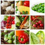 Gemüse. lizenzfreies stockbild