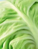Gemüse Lizenzfreie Stockbilder