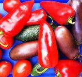 Gemüse auf einem blauen Hintergrund Stockbilder