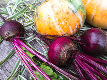 Gemüse auf einem hölzernen Hintergrund Lizenzfreie Stockfotos