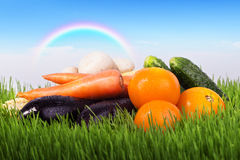 Gemüse auf einer grünen Wiese Stockfoto