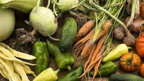 Gemüse auf hölzernem hackendem Vorstand Stockfoto
