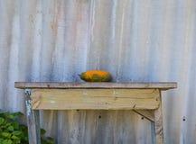 Gemüse, das auf einer Bank nahe einem Zaun liegt Lizenzfreie Stockbilder