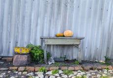 Gemüse, das auf einer Bank nahe einem Zaun liegt Stockbilder