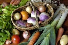Gemüse in der ruhigen Lebensdauer Stockbild