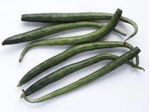 Gemüse des essbaren Eibisches Stockbilder