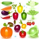 Gemüse des kompletten Sets Lizenzfreie Stockfotos