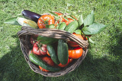 Gemüse in einem hölzernen Korb stockfotos