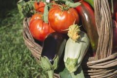 Gemüse in einem hölzernen Korb stockfotografie