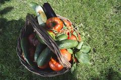 Gemüse in einem hölzernen Korb lizenzfreies stockbild
