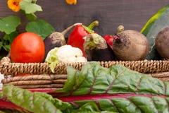 Gemüse in einem Korb in den Vordergrundmangoldgemüseblättern stockfoto