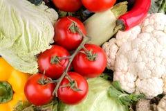 Gemüse einschließlich Kopfsalatgurken-Kohlzwiebel pfeffert Rote-Bete-Wurzeln Karottenzucchini und -tomaten Frische Tomaten und Zu stockfotografie