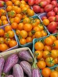 Gemüse für Verkauf an einem Markt der Landwirte Lizenzfreies Stockfoto