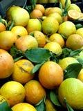 Gemüse in Griechenland auf dem Markt Kaufen Sie Orangen reisen Lizenzfreie Stockfotos