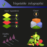 Gemüse infographic Schablone für Radfahrendiagramm Lizenzfreie Stockfotografie