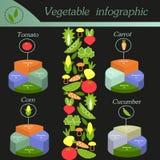 Gemüse infographic Schablone für Radfahrendiagramm Lizenzfreies Stockbild