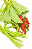 Gemüse ist natürliche Nahrung Lizenzfreie Stockfotos