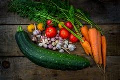 Gemüse, Karotten, Zucchini, Knoblauch, rote Tomaten Lizenzfreie Stockfotografie