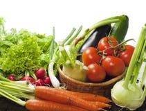 Gemüse mischt im Garten stockbild