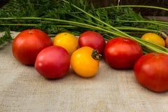Gemüse rot und gelbe Tomaten auf einer grauen Serviette Stockfotografie