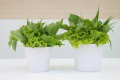 Gemüse, Schüssel köstliche frische grüne Kopfsalat-Blätter auf Whi lizenzfreies stockfoto