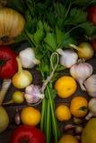 Gemüse Sellerie, Zwiebel, rote Tomaten, gelbe Tomaten, Knoblauch Stockbilder