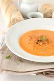 Gemüse-Suppe Stockbilder