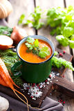 Gemüse-Suppe Stockfotografie