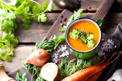 Gemüse-Suppe Stockfoto