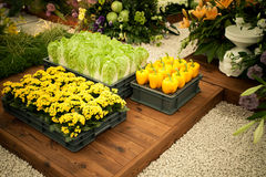 Gemüse und Blumen Lizenzfreie Stockfotografie