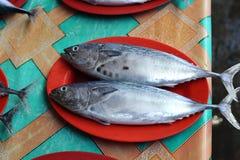 Gemüse und Frucht, Fischmarkt in Morotai-Insel, Indonesien Stockfotos
