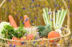 Gemüse und Frucht im Korb Lizenzfreies Stockfoto