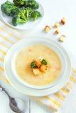 Gemüse- und Käsesuppe lizenzfreie stockfotografie
