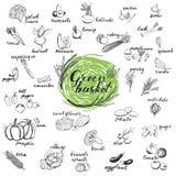 Gemüse vector Set Stockbild