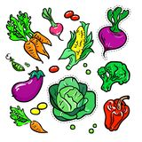 Gemüse - Vektor lokalisierte die Retro- eingestellten Aufkleber Stockfotografie
