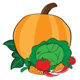 Gemüse vom Garten Lizenzfreie Stockfotografie