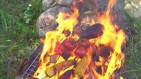 Gemüse wird im Feuer auf dem Grill, Nahaufnahmezeitlupe gekocht stock video