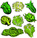 Gemüseabbildungserie Lizenzfreies Stockfoto