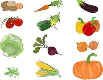 Gemüsebildsatz (Vektor) Lizenzfreies Stockfoto