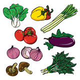 Gemüsefarbsatz Lizenzfreie Stockfotos