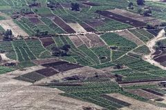 Gemüsefelder in Äthiopien Stockbilder