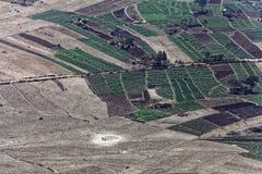 Gemüsefelder in Äthiopien Lizenzfreie Stockbilder