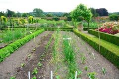 Gemüseflecken und ummauerter Garten Stockbild