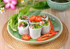 Gemüsefrühlingsrollengesundes Lebensmittel lizenzfreies stockfoto