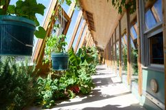 Gemüsegarten innerhalb eines stützbaren Hauses Earthship nahe Taos im New Mexiko, USA lizenzfreie stockfotos