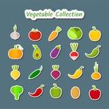 Gemüseikonensatz des netten Designs lokalisierte Flecken Lizenzfreie Stockfotografie
