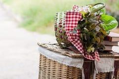 Gemüsekorb lizenzfreie stockbilder