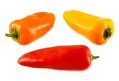 Gemüsepaprika Stockbilder