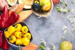 Gemüsepaprika gelb und rot, Kartoffeln und Kürbis auf einem grauen Hintergrund Die Ernte ist herbstlich Freier Raum für Text, Rah lizenzfreie stockfotografie