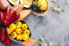 Gemüsepaprika gelb und rot, Kartoffeln und Kürbis auf einem grauen Hintergrund Die Ernte ist herbstlich Freier Raum für Text, Rah stockbild